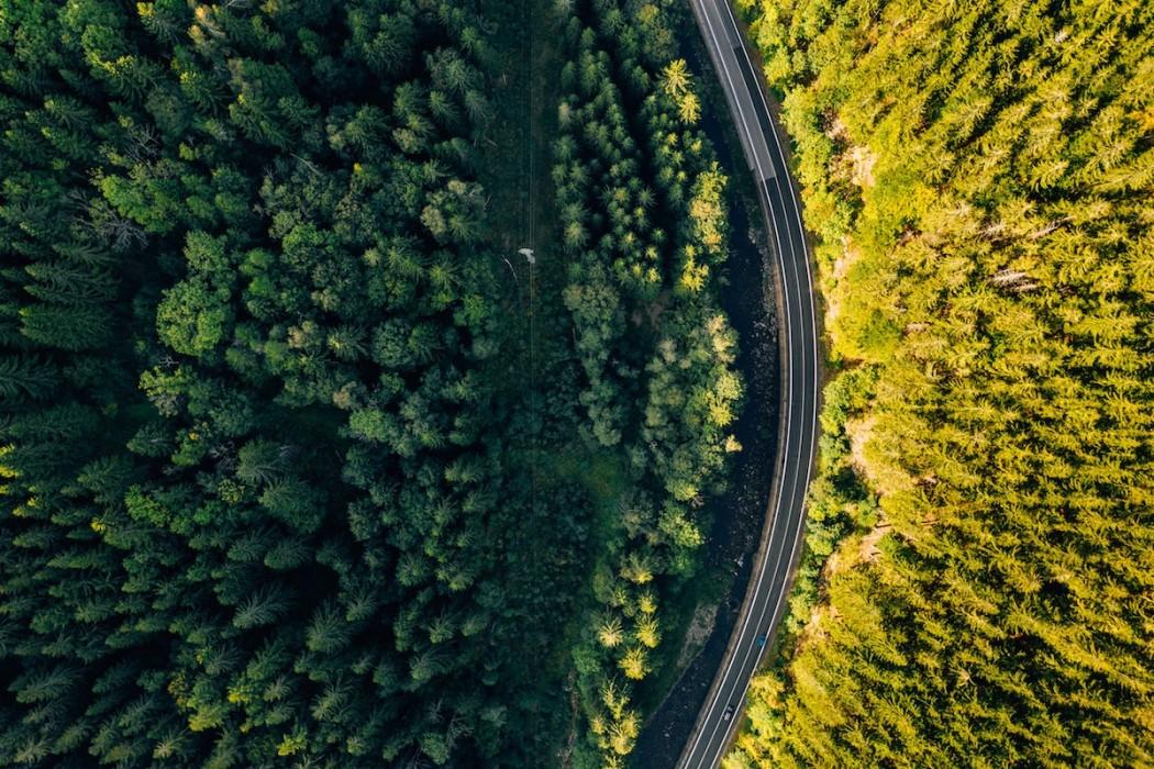 fot. Marcin Jozwiak / pexels.com